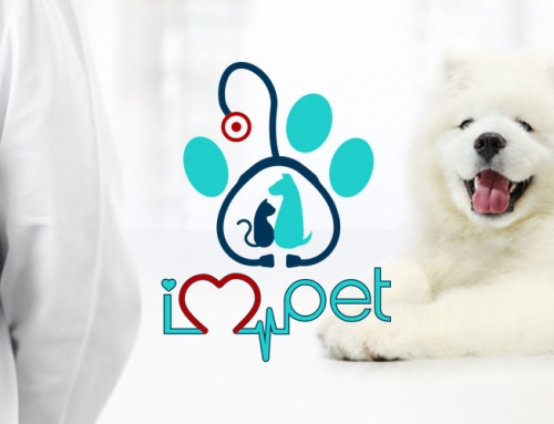 iPet Veterinary Clinic